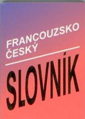 Slovník francouzsko - český